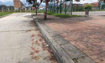Capturan a jovencita por ser cómplice en asesinato en Ciudad Bolívar