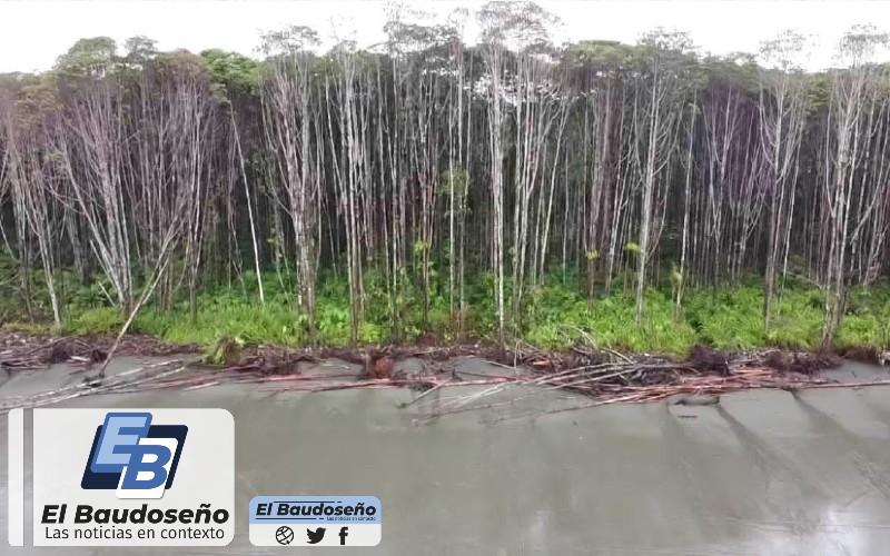 Crítica situación en el Bajo Baudó por causa de las lluvias y la erosión costera.