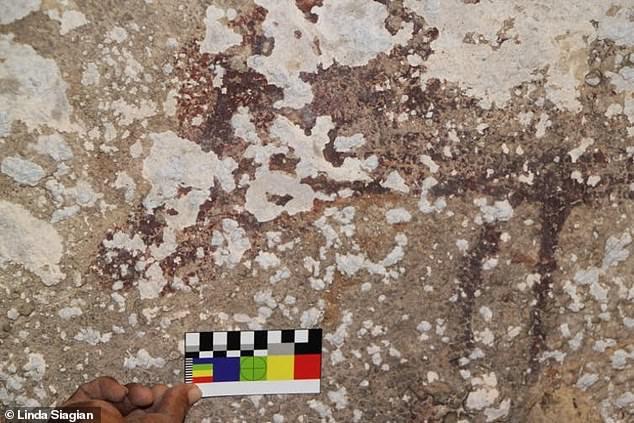 Los cristales de sal que se forman sobre y detrás del antiguo arte rupestre en Indonesia están causando su descomposición a un ritmo dramático