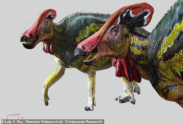 Los paleontólogos han descubierto una especie de dinosaurio 'hablador' de hace 73 millones de años que emitía 'sonidos fuertes' para ahuyentar a los depredadores y atraer parejas.  En la imagen: la impresión de un artista de cómo la criatura con cresta, Tlatolophus galorum, podría haber lucido en vida