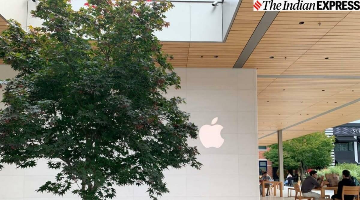 La App Store de Apple tuvo un margen del 78% en 2019, dice un experto de Epic