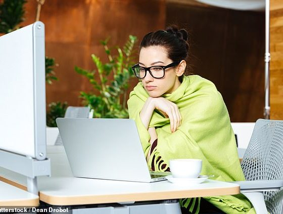 Las temperaturas más frías en una oficina pueden aumentar el aumento de peso al ralentizar su metabolismo, advierten los científicos, que dicen que debería 'considerar llevar una manta'