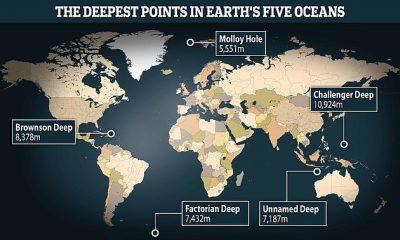 La imagen muestra la ubicación de los puntos más profundos dentro de cada uno de los océanos del mundo (Atlántico, Sur, Índico, Pacífico y Ártico)