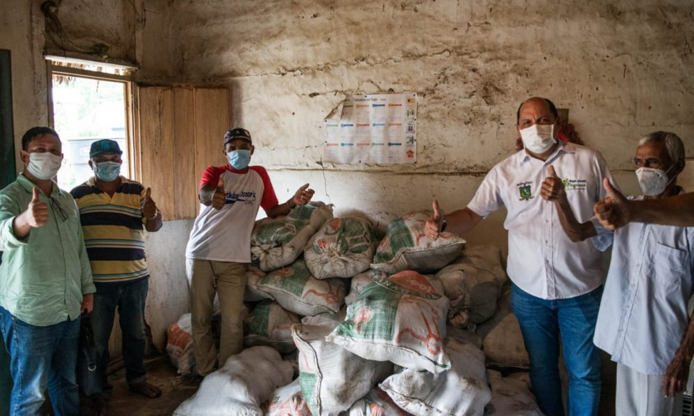 15 toneladas de ñame producido en San Cayetano serán transportadas a Cartagena