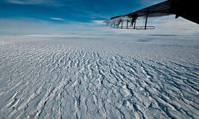 El glaciar Pine Island de 180 billones de toneladas de la Antártida podría colapsar en 20 años, ya que la plataforma de hielo flotante que ayuda a contenerlo se está `` desgarrando ''.  En la imagen, una vista a través del hielo que muestra las grietas que se forman donde el glaciar conectado a tierra fluye hacia la plataforma de hielo flotante.