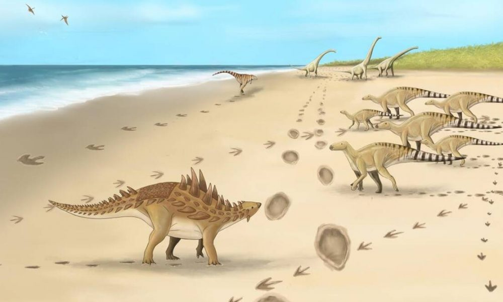 dinosaur, dinosaur extinction, dinosaur extinction clues, crater dinosaur extinction, crater's age dinosaur extinction, dinosaur extinction news,