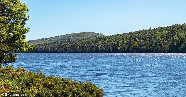 Los niveles de oxígeno en los lagos de agua dulce templados del mundo están disminuyendo más rápido que en los océanos, dicen los investigadores del Instituto Politécnico Rensselaer en Nueva York.  En la foto, lago Michigan