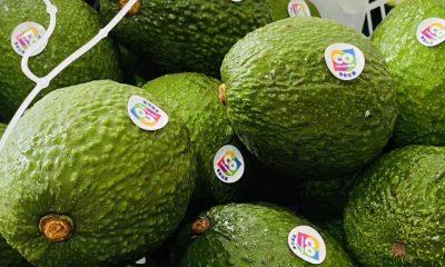 ¿Qué productos exporta Colombia en 2021?   Economía