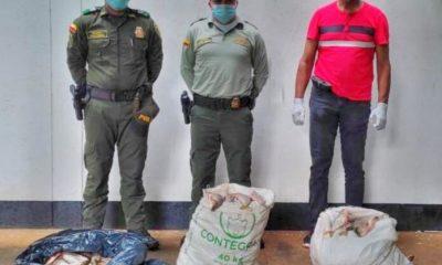 EN PUERTO CARREÑO FUERON INCAUTADOS 400 UNIDADES DE PESCADO EN APARENTE ESTADO DE DESCOMPOSICIÓN - Noticias de Colombia