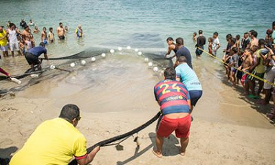 Festival de Pesca 2021 rinde homenaje a los pescadores - Noticias de Colombia