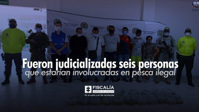 Fueron judicializadas seis personas que estarían involucradas en pesca ilegal