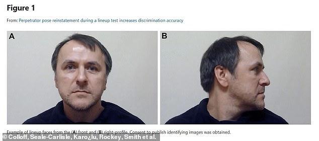 En comparación con las fotografías estáticas, las alineaciones interactivas aumentaron la identificación correcta de los sospechosos culpables en un 18%.  En la imagen, ejemplo de caras alineadas desde el frente (A) y el perfil derecho (B)
