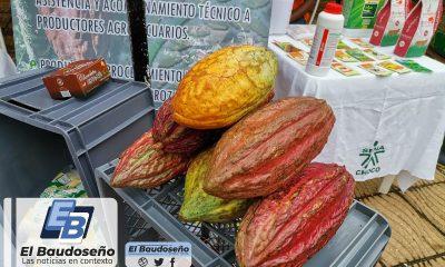 Productores chocoanos lograron expectativas de ventas por más de $7.500 millones en Jornada de Negocios de Agricultura por Contrato.
