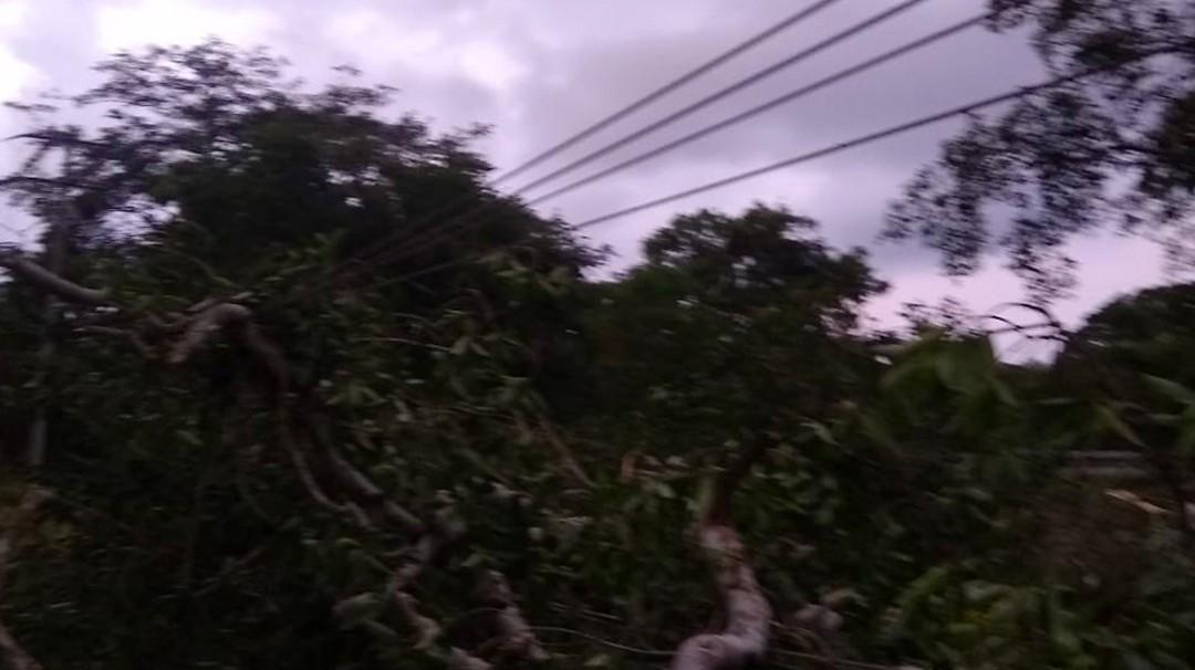 Seis comunidades de Sucre y Bolívar sin energía eléctrica por las lluvias - Noticias de Colombia