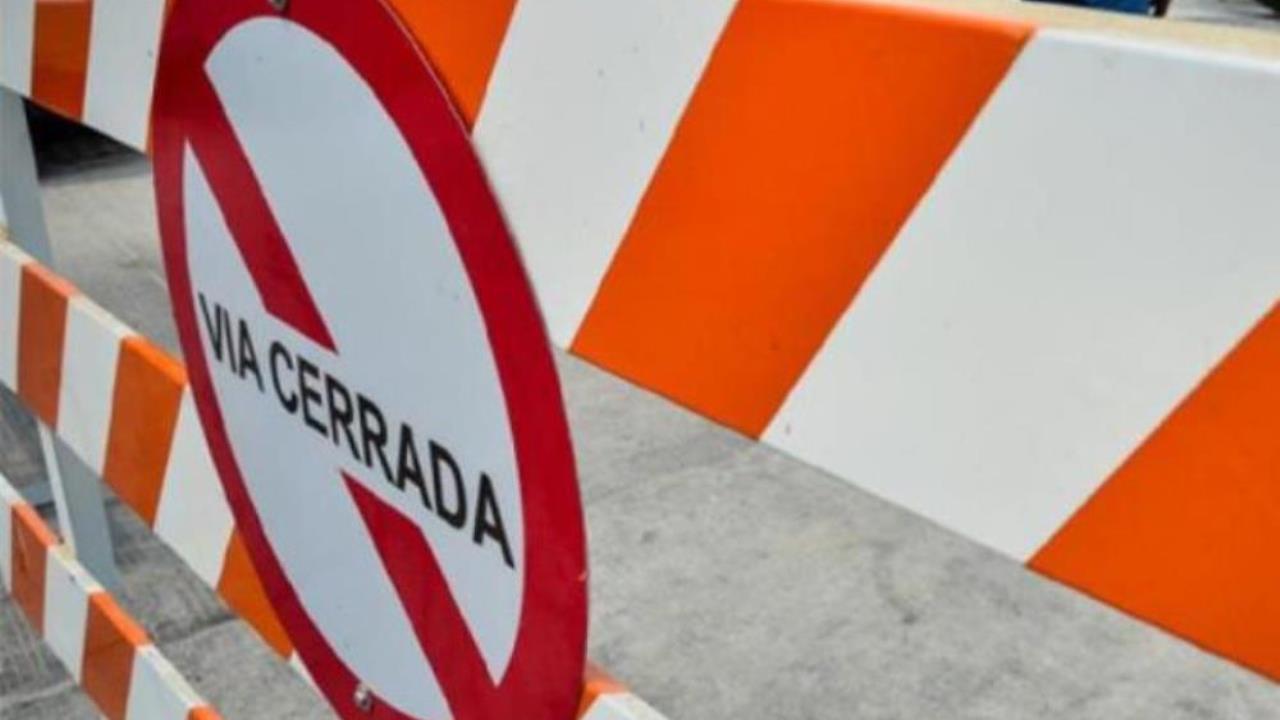 ¡Por caída de árbol! Cierre total en Las Palmas - Noticias de Colombia