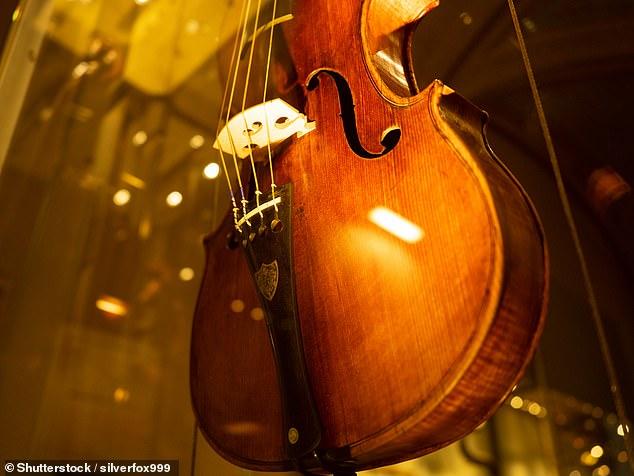 Los sonidos excepcionales de los violines Stradivari (como el que se muestra en la imagen) provienen de cómo los instrumentos fueron tratados con alumbre, bórax, cobre, agua de cal y zinc para combatir los gusanos.