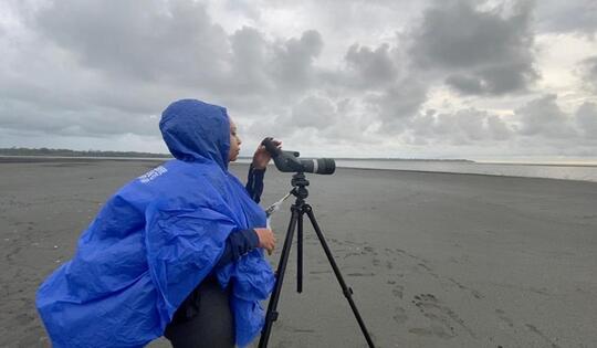 Se inició monitoreo de aves en Punta Soldado.