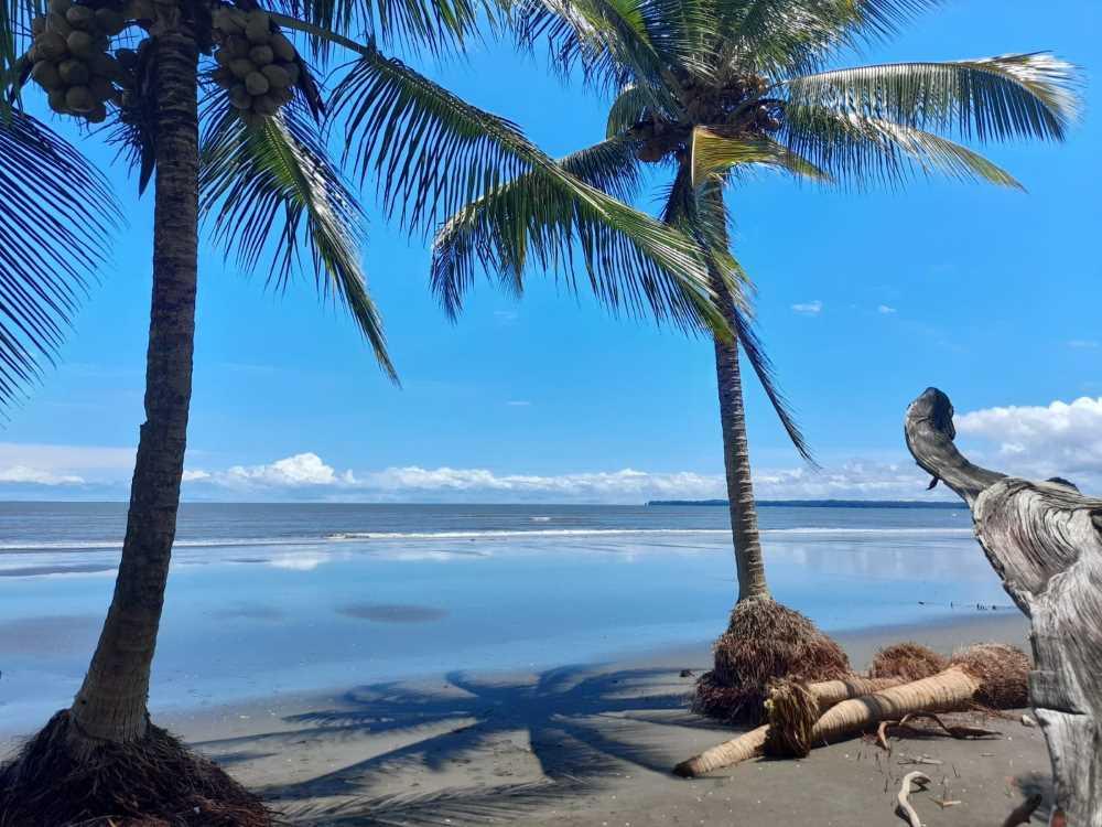 Reactivación turística del corregimiento Punta Soldado en Buenaventura