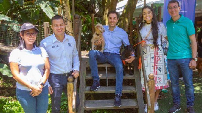 ¡Tan bueno! En Medellín crearon una plataforma digital para caracterizar a las mascotas