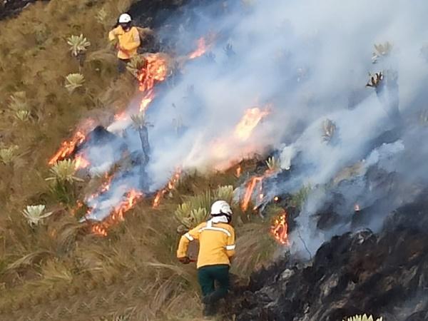 A esta hora voraz incendio amenaza con destruir paramo en zona rural de Cumbal