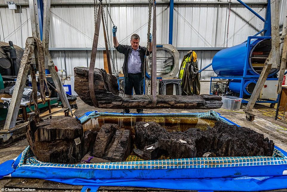 Los restos de un hombre de la Edad del Bronce de 'alto estatus' fueron encontrados enterrados, junto con un hacha perfectamente conservada, en un ataúd de troncos (en la foto) en el fondo de un estanque de un campo de golf.