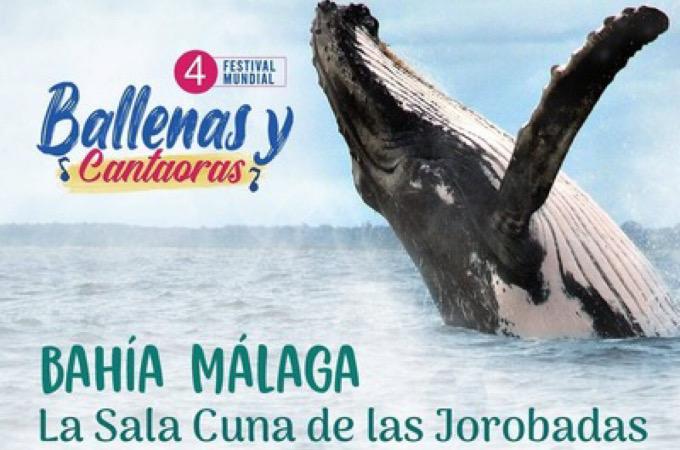Festival Mundial de las Ballenas