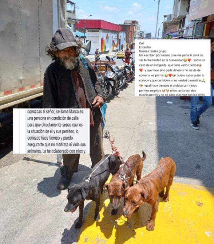 Don Marco y sus perros