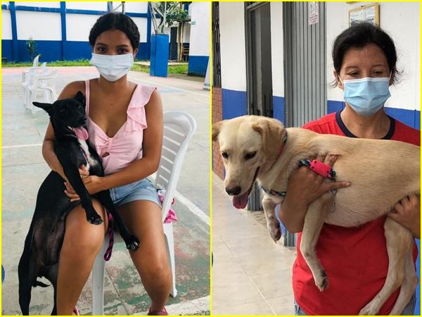 ¡Enhorabuena! En Tumaco esterilizaron a 900 animales para contrarrestar el abandono y maltrato