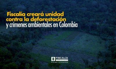 Fiscalía creará unidad contra la deforestación y crímenes ambientales en Colombia - Noticias de Colombia