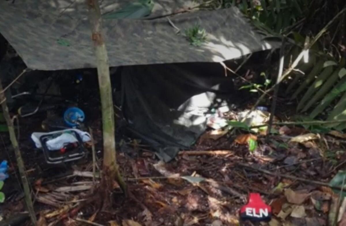 Mueren 7 miembros del ELN durante operación militar en Chocó - Noticias de Colombia
