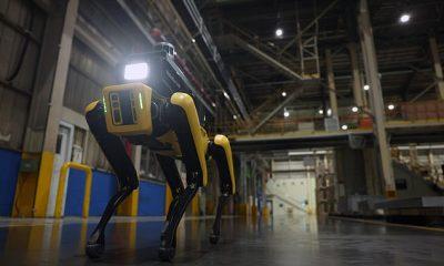 Hyundai tiene un nuevo oficial de seguridad en una de sus fábricas de ensamblaje de Kia en Corea del Sur: Spot, el famoso perro robótico de Boston Dynamic, en la foto.