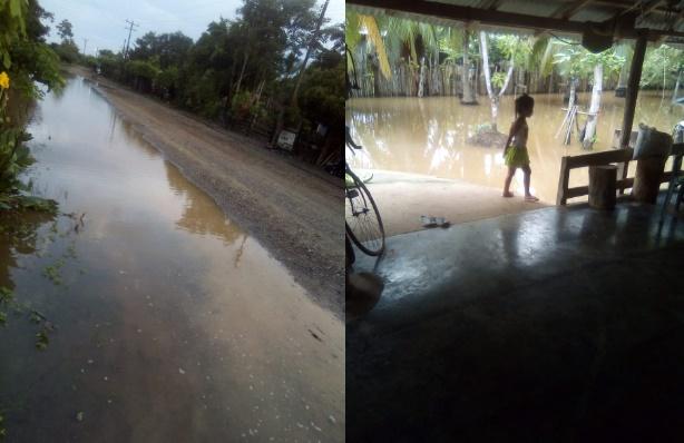 Un mal de nunca acabar, desborde del caño La Caimanera. Comunidad de San Pelayo pide apoyo urgente
