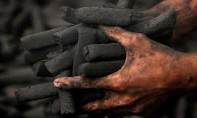 ¿Cuánto le entraría a Colombia por la crisis energética? | Gobierno | Economía