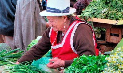 Alcaldía de Arauca exalta el trabajo de la mujer rural - Noticias de Colombia
