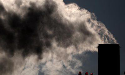 Bonos, clave para bajar emisiones | Finanzas | Economía