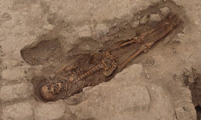 Los restos humanos de 29 personas enterradas como ofrendas de sacrificio hace más de 1.000 años han sido descubiertos en un templo preinca en el norte de Perú.