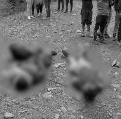Dos nuevos homicidios en zona rural de Caldono - Noticias de Colombia