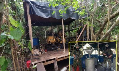 En Nariño destruyeron laboratorios cocaleros que producía más de 3 toneladas de droga