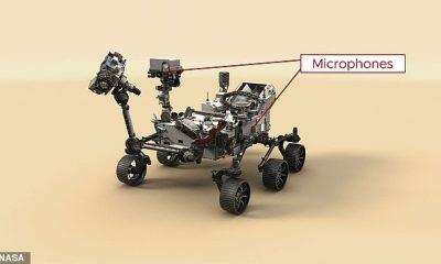 El rover Perseverance de la NASA ha estado grabando los 'sonidos espeluznantes de Marte' desde que llegó en febrero, incluido el crujido de sus ruedas y el helicóptero Ingenuity.