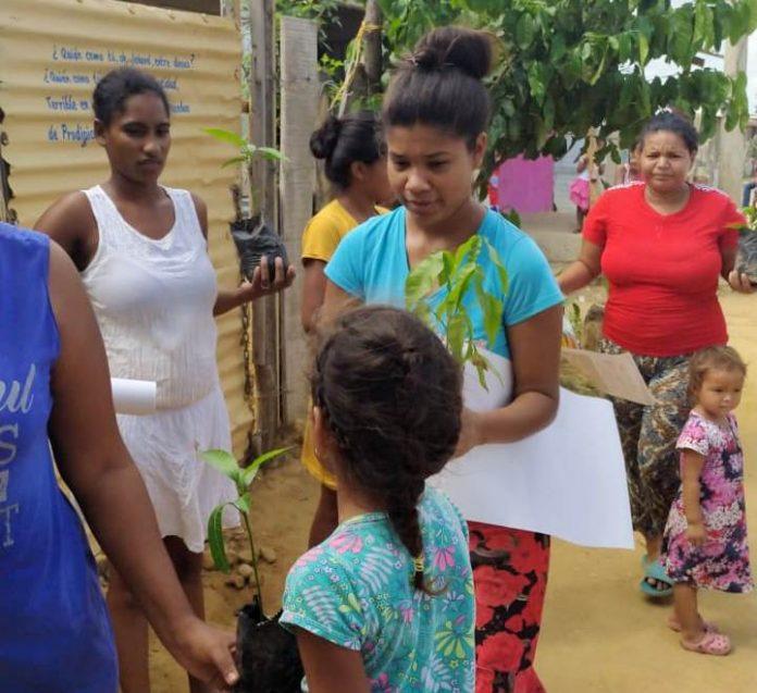 Adultos y niños se apropiaron de la campaña y cada uno tomó un árbol para sembrarlo.